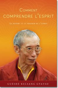 Image du livre Comment Comprendre L'Esprit