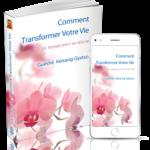 Livre Ebook Comment Transformer Votre Vie