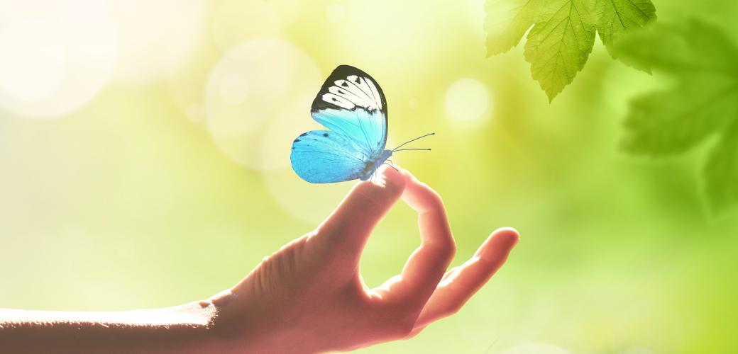 6 méditations essentielles pour transformer sa vie